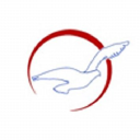 Air Peace Airline logo icon