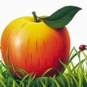 Gallimard Jeunesse logo icon