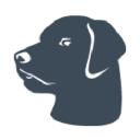 Galvin Tech logo icon