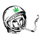 Ganjanauta logo icon