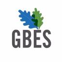 Gbes logo icon