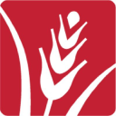 The Greater Boston Food Bank logo icon