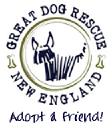 Great Dog Rescue New England logo icon