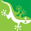 Gecko Covers logo icon