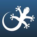 Gecko Form logo icon