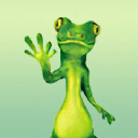 Gecko Pest Services logo icon