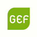 Green European Foundation logo icon