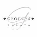 Georges Hotel logo icon