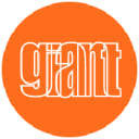 giantgroup.com logo icon