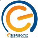 Gigasonic.com logo