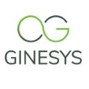 Ginesys logo icon