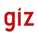 Giz logo icon