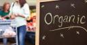 Global Organics logo icon