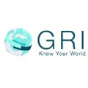 Global Risk Insights logo icon