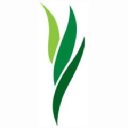 Green Meadow Waldorf School logo