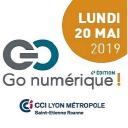 Go Numérique logo icon