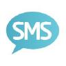 Burst SMS logo