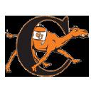 Camel Watch logo icon