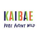 Kaibae logo icon
