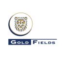 Gold Fields logo icon