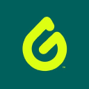 Goodwipes logo icon