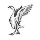 Goose & Gander logo icon