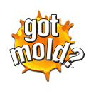 got mold? Disaster Recovery Services, Inc. logo