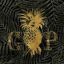Grand Pacific logo icon