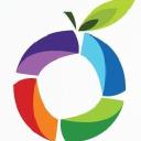 Grapelime logo icon