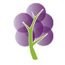Grapetree logo icon