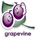 Grapevine Evaluations logo icon