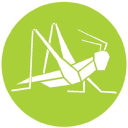 Grasshopper logo icon