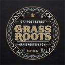 Grassroots logo icon