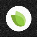 Greane Tree Technology logo