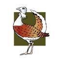 Great Bustard Group logo