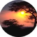 Green Providers Directory logo icon