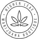 Green News logo icon