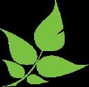 Greenfiber logo icon