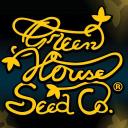 Buy Cannabis Seeds logo icon