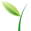 Green Vine Marketing logo icon