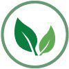 Green Wellness Life logo icon