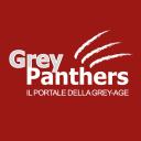Grey-panthers.it logo