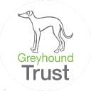 Read Greyhound Trust Reviews