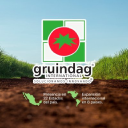 Gruindag International S.A. de C.V logo