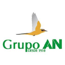 Grupo An logo icon