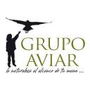 Grupo Aviar Tirid S.L logo