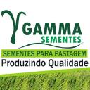 Grupo Gamma - Brasil logo