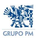 Grupo PM, S.A. de C.V. logo