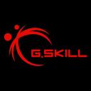 Skill logo icon