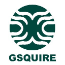 Gsquire India Pvt Ltd logo